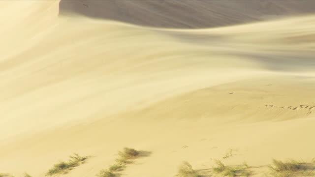 sands storm