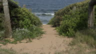 Sandy path to beach and ocean