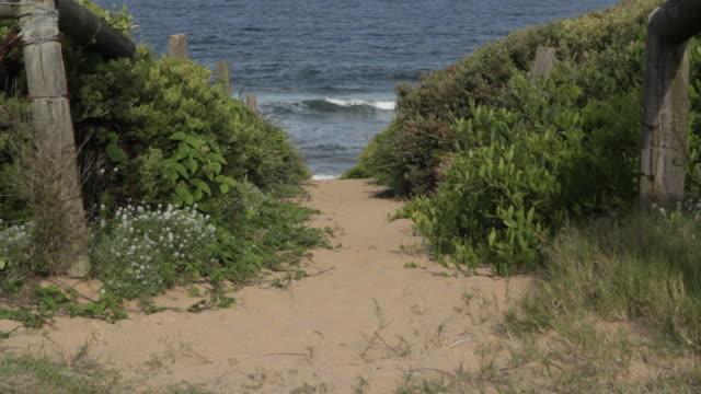 Sandy path to beach and ocean