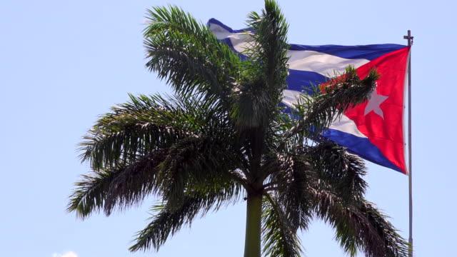 Santa Clara, Cuba: Cuban flag and Royal Palm tree, both are Cuban National Symbols