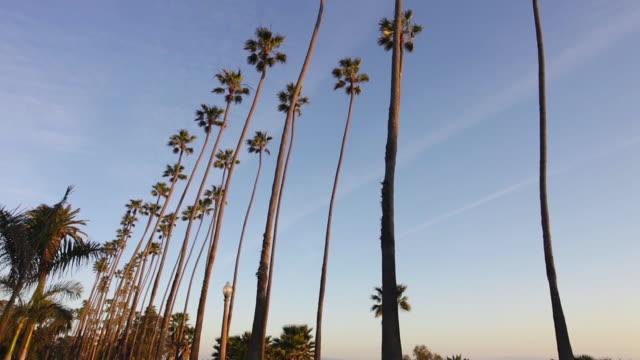Santa Monica Palisades Park at sunset