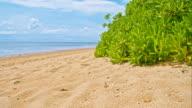 WS DS Sanur Beach