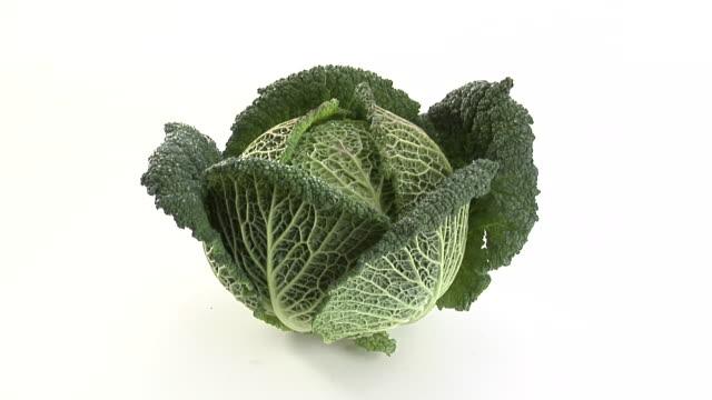 CU, Savoy cabbage on white background