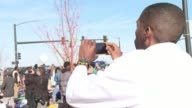 Scattered protests took place around St Louis on Saturday in response to the decision not to indict following the fatal police shooting of unarmed...