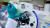 Scene of testing in Laboratory