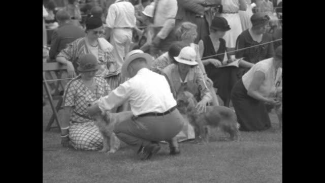 Scene outdoors tents and crowd seated and walking about can see some small dogs / spectators behind rope dogs with owners seated in front / MS judge...