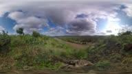 Scenic African Wilderness
