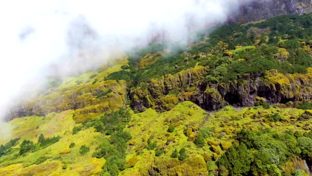 Scenic Landscape of Green Mountain and Fog in Beautiful Day, Jiaozi Mountain, China