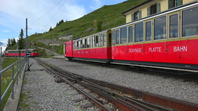 Schynigge Platte Railway, Interlaken, Bernese Alps, Switzerland, Europe