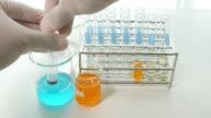 Scientific experiment in laboratory