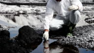 Wissenschaftler analysieren das Wasser von einem Fluss