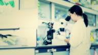 Wetenschapper en bio lab experimenteren