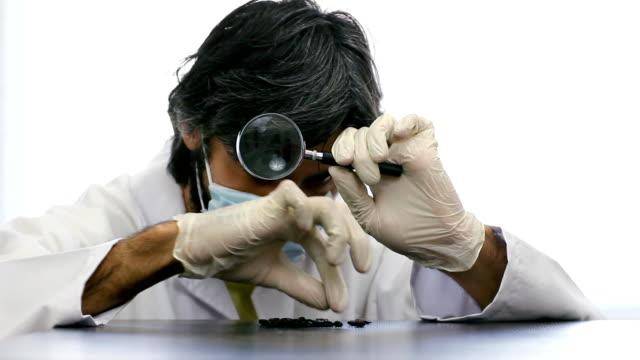 Scientist examines coffee beans