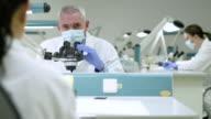 Scientist examining samples through a microscope