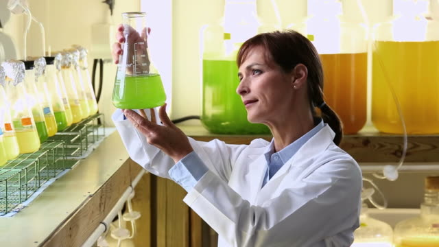 MS Scientist in Biology Tech Laboratory Inspecting Liquid in Beaker / Eastville, Virginia, United States