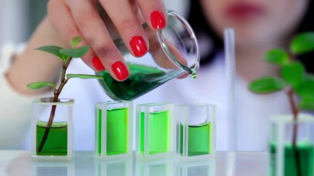 Scientist in the laboratory adding preparation to flasks