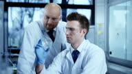 Scientist is analysing DNA structure.