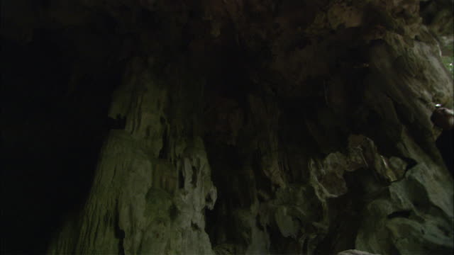 A Scientist shines his light on the walls of a cave as he explores.