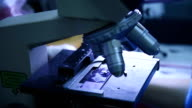 Scientist with microscope closeup shot in laboratory