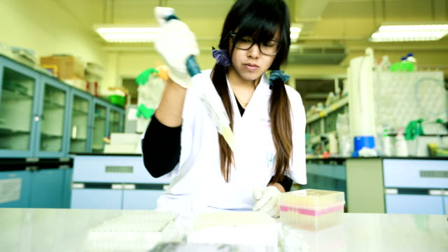 Scientist working at laboratory
