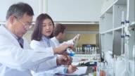 scientist works in modern biological lab