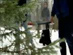 Scientists testing methane emissions in pine forest using Perspex cylinder Germany