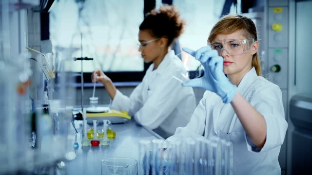Scientists working in a research laboratory