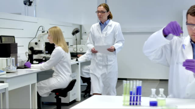 WS DS Scientists Working In The Laboratory