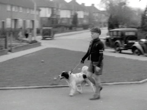 A Scout walks a dog during Bob a Job week
