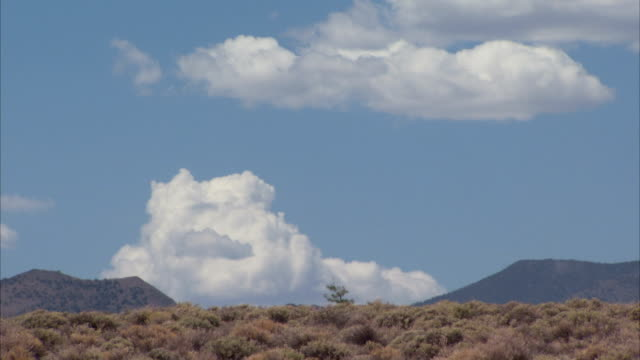 Scrub land in front of mountains in Nevada. Available in HD
