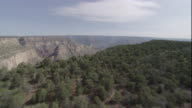 Scrub trees grow on a mesa that ends in a drop off over the Grand Canyon. Available in HD.