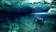 A scuba diver swims through halocline in a cenote cave, Yucatan, Mexico. Available in HD.