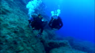 Scuba divers explore along a coral reef. Available in HD.