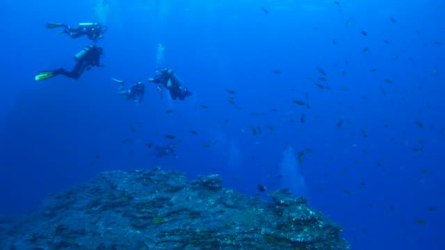 Scuba diving, undersea rock, Mexico