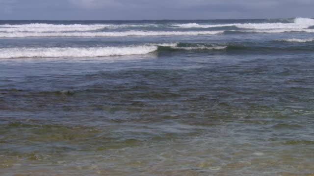 WS Sea  / Brightown, Barbados