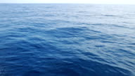 Sea Cruising