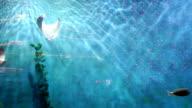 Meeresfische schwimmen frei im Meerwasser