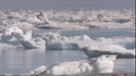Sea ice drifts over the Arctic Ocean. Available in HD.