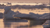 Sea ice drifts over the Arctic Ocean in Canada.