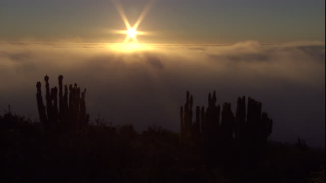 Sea mist drifts in over Atacama desert at sunset, Chile Available in HD.