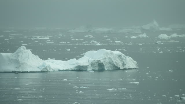 Sea View Of Icebergs On Arctic Waters
