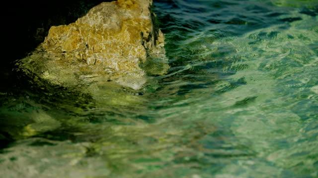 sea water waves and Sea Shore
