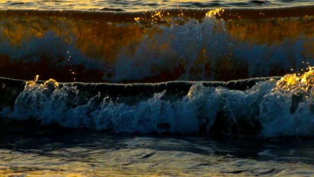 Sea wave in the sun