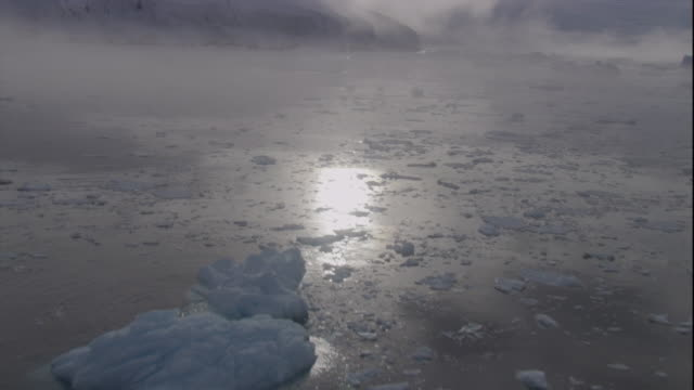 A sea with icebergs reflects the sun near coast of Antarctica.