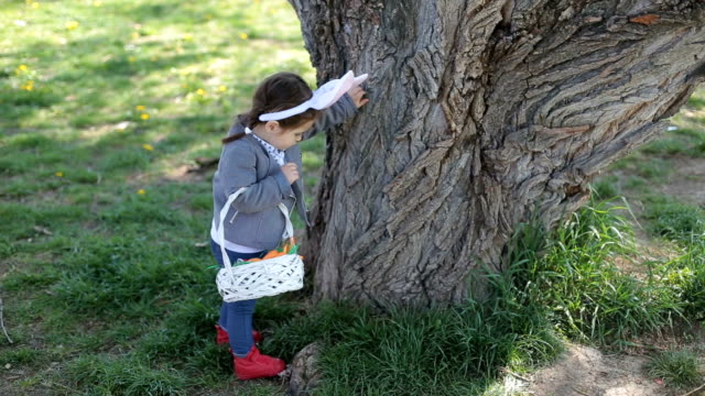 Searching for chocolate eggs