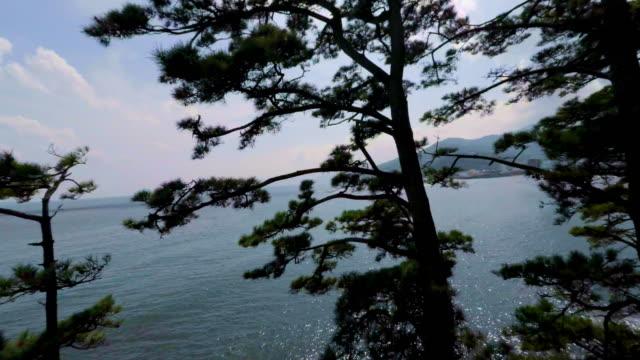 seaside drive -4K-