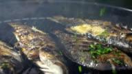 CU DS oli pesce alla griglia con prezzemolo