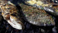 SLO MO Seasoning Grilled Fish With Salt