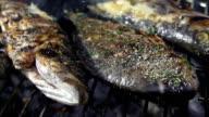 SLO MO oli pesce alla griglia con sale