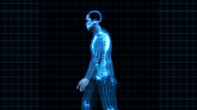 Security X-Ray Scan - Man with Gun (HD)